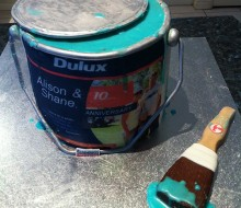 Dulux Paint Can